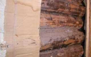 Можно ли картоном или целлюлозой утеплить стены и пол дома