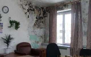 Гидроизоляционная смесь для стен в квартире и доме изнутри
