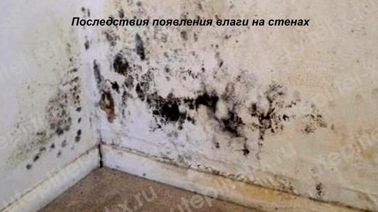 Последствия влаги на стенах